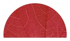 "Glasheizung ""Red Leaf H"""